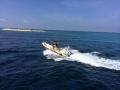 29  fisherman pro 001