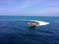 29  fisherman pro 005