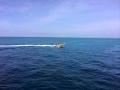 29  fisherman pro 008