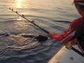 29  fisherman pro 015