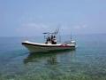 29  fisherman pro 021